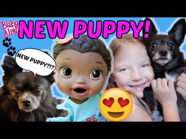 BABY ALIVE gets a NEW PUPPY! The Lilly and Mommy Show! FUNNY KIDS SKIT!
