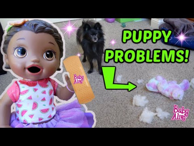 BABY ALIVE has PUPPY PROBLEMS! The Lilly and Mommy Show! The TOYTASTIC Sisters! FUNNY KIDS SKIT!