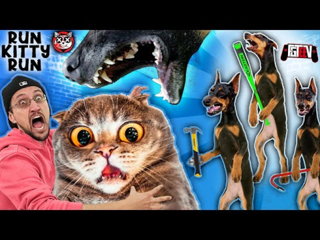 CAT LOVERS WILL HATE THIS GAME!!  The Dog Bullies! (FGTeeV RUN Kitty RUN!)
