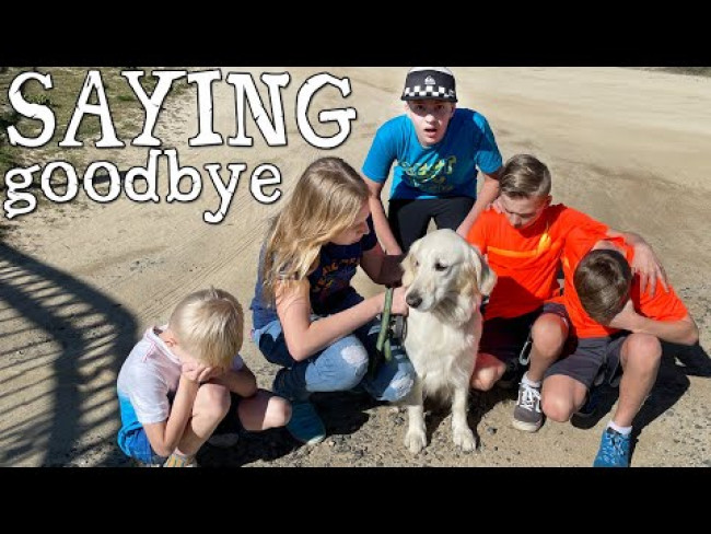 Goodbye to Our Dog || Mommy Monday