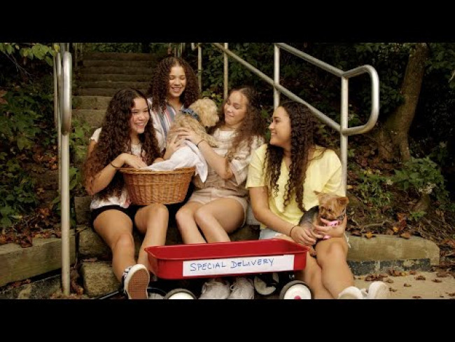 Haschak Sisters - Back To You (Music Video)