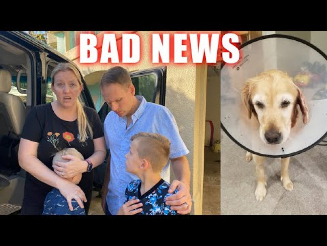 HORRIBLE News About our Dog Kona, Chris Lost & Owen Kicked Out of Gym || Mommy Monday