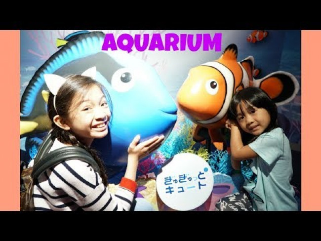 Kaycee & Rachel saw a DOLPHIN at the AQUARIUM