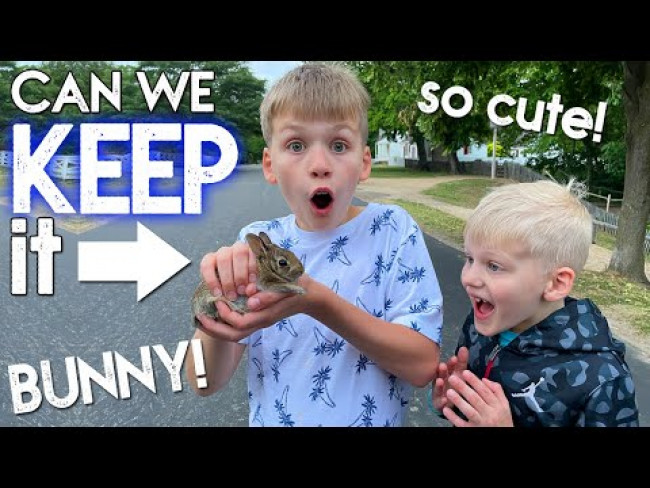 New Family Pet: Meet the Cutest Bunny Ever!