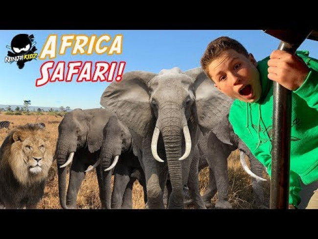 Ninja Kidz go on Safari in Africa! Wild Animals! Lions and Leopards!