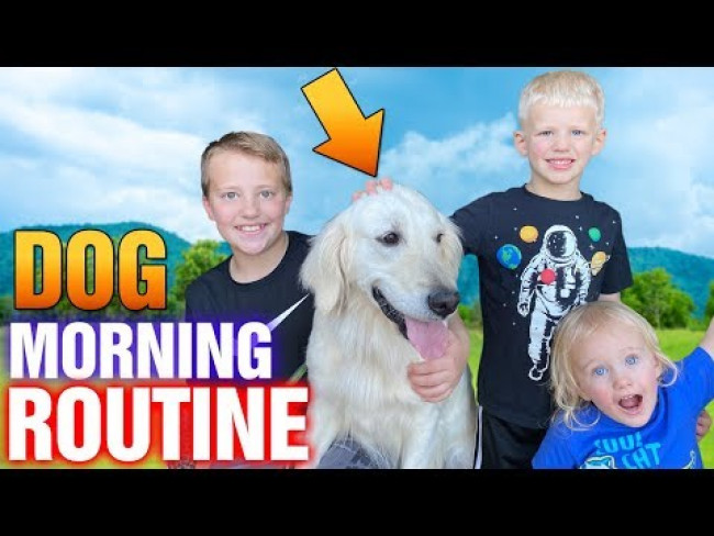 Puppy Morning Routine || Family Fun Pack Hana