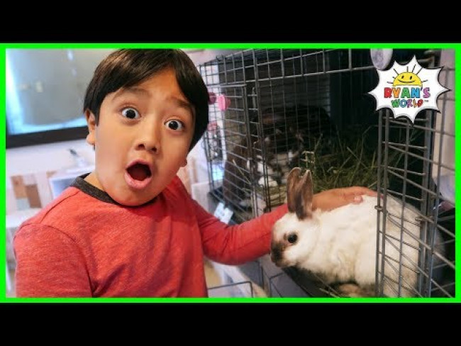 Ryan have fun at the Pet Rabbit Cafe!!!