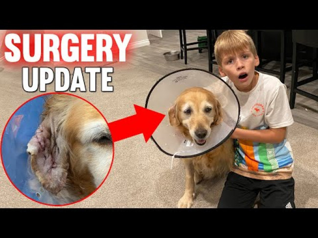 Surgery Update & Recording a Song