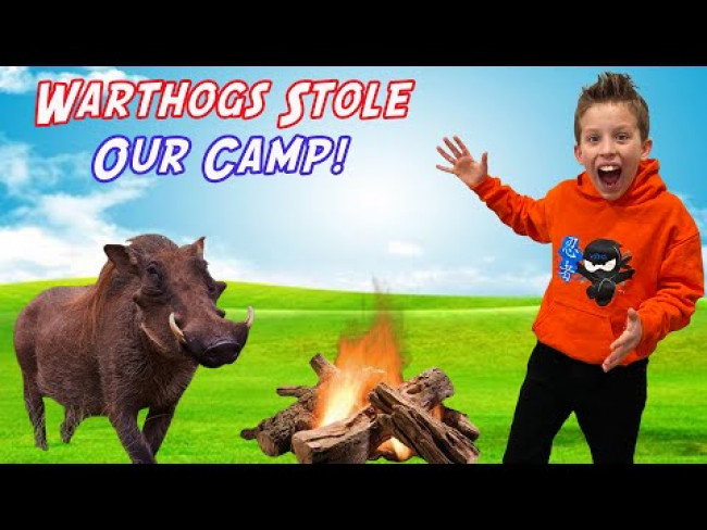 WARTHOGS Stole Our Camp!